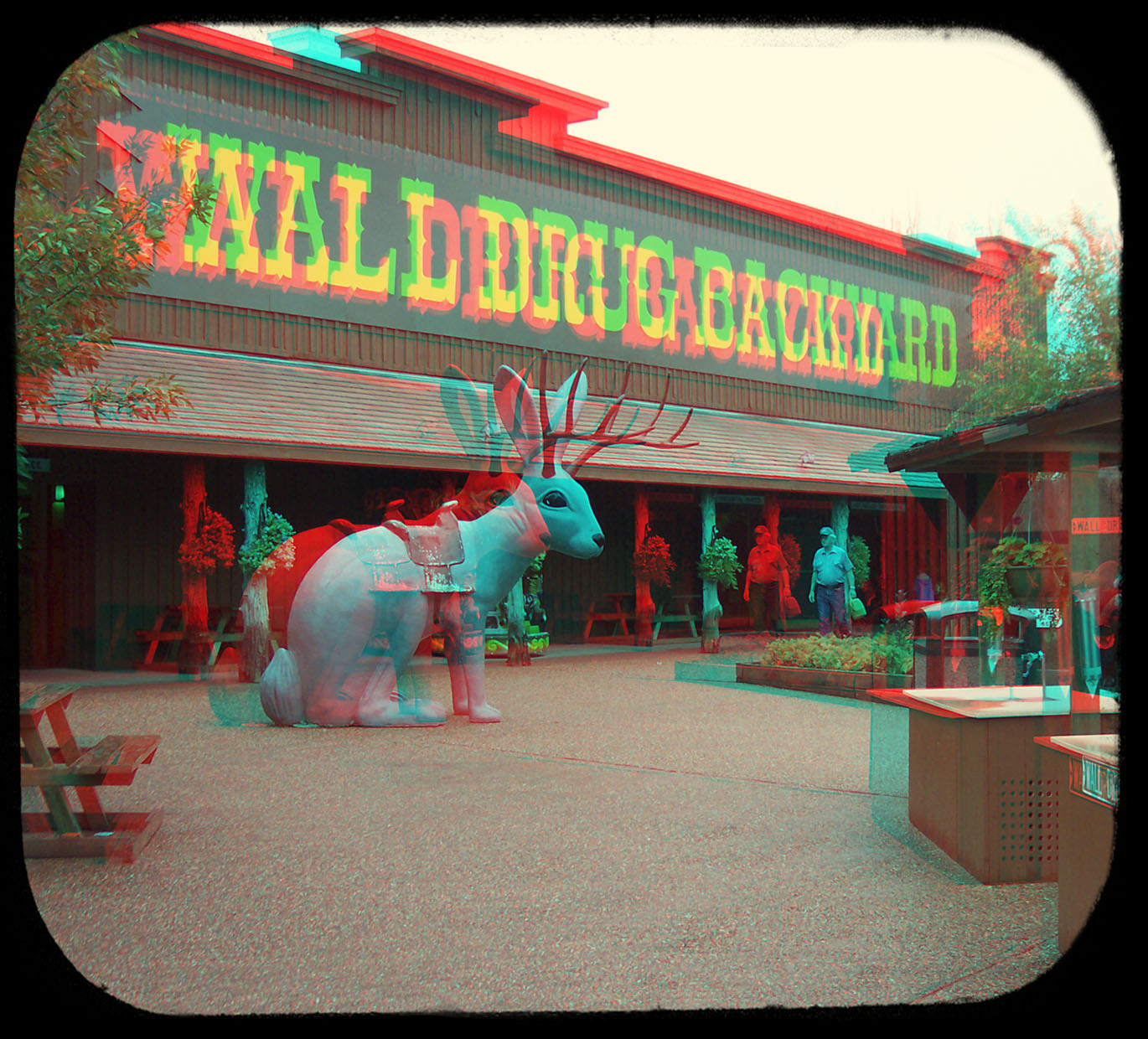 walldrugbackyardrabbit_a